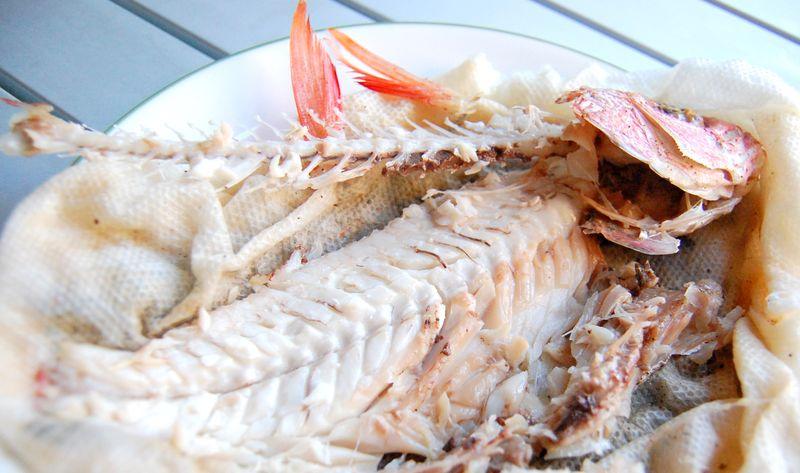 LSSC fish - devoured