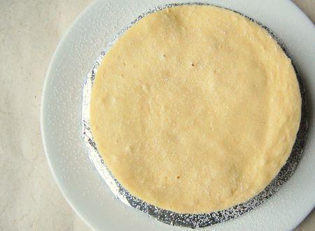 Rice Cooker Yogurt Cake S H I N S H I N E