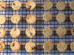 Soy Pulp Cookies - cranberry orange & mugwort black sesame (콩비지 과자 - kong bi ji gwa ja)