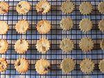 Soy Pulp Butter Cookies - Cranberry Orange & Sesame Mugwort (콩비지 쿠키)