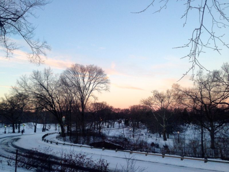 After the snow storm @ NY Central Park